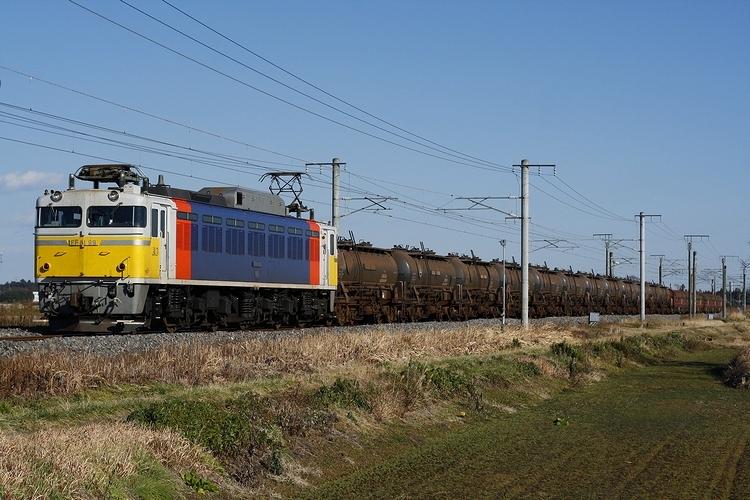 _MG_9441(1)1_20101230022320.jpg