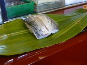 熊本天草「奴寿司」10