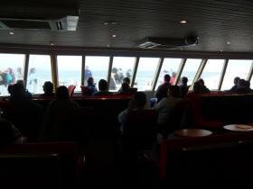 カンガルー島フェリーのカフェ3