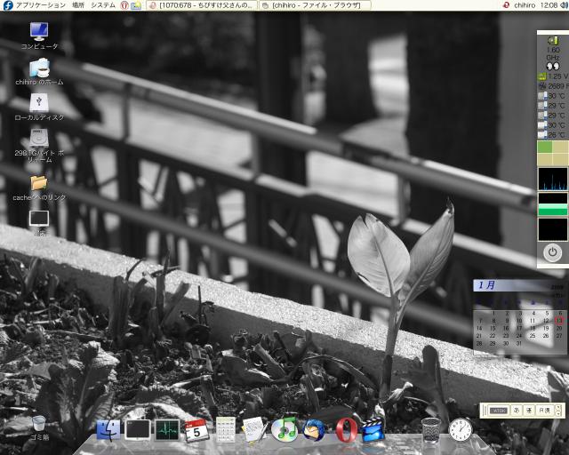 Fedora8デスクトップ