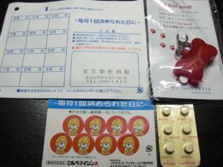 CIMG1043_20090528053440.jpg