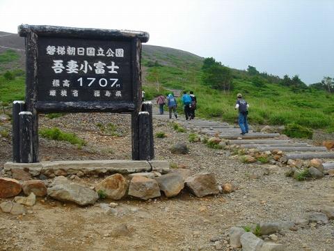 713f-7.jpg