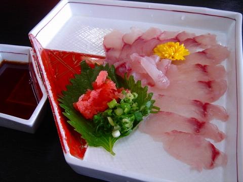 namazu-2.jpg