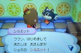 siruetto-hikkyoshi 004
