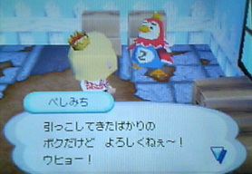 pesimiti-hikkyoshi 001
