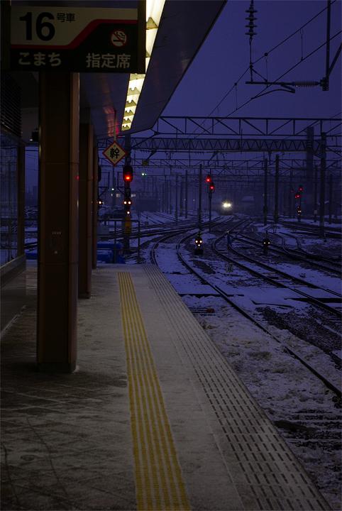 IMGP14313.jpg