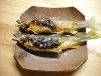 おみやげの鮎塩焼き