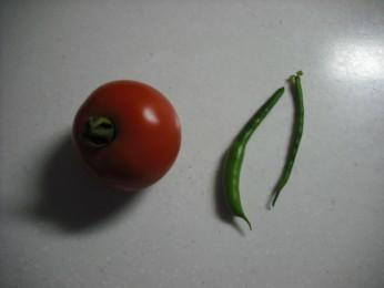 トマトといんげん6