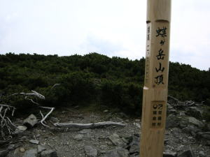 image620.jpg