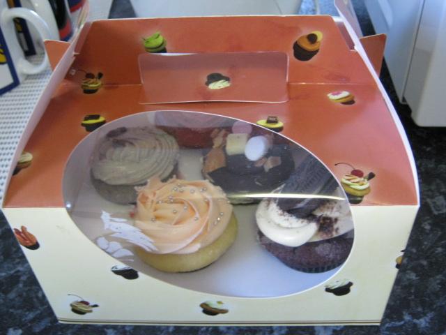 Cupcakeonpitt1