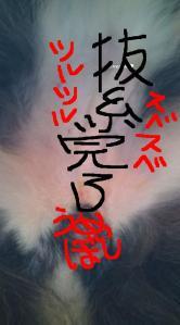 20101216214803.jpg