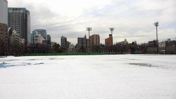 1-24-snow.jpg