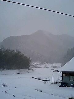 今年最後の雪景色