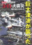 book-tsunami.jpg