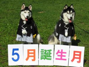 13-koyuki2008-09-14-054.jpg
