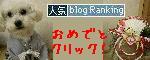 ブログランキングバナー10