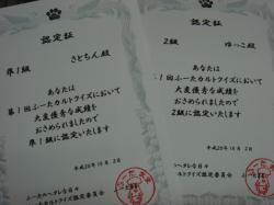 DSC00774_20081005205821.jpg