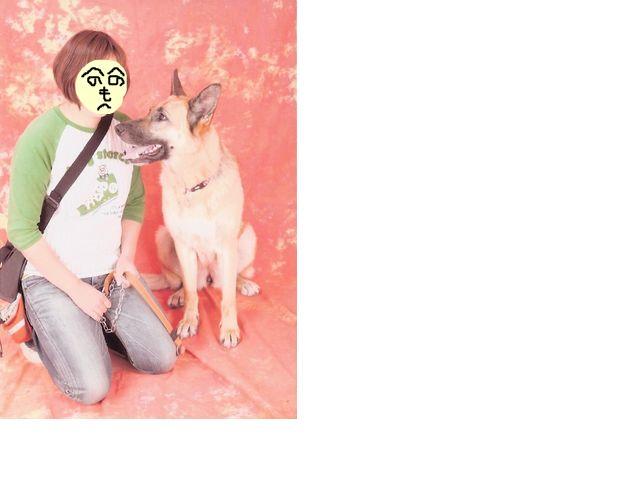 snap_huzoroi05_200954163259.jpg