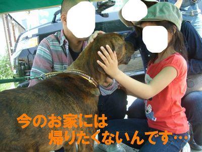 snap_huzoroi06_200942202320.jpg