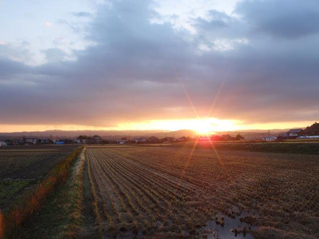 伊賀の田1