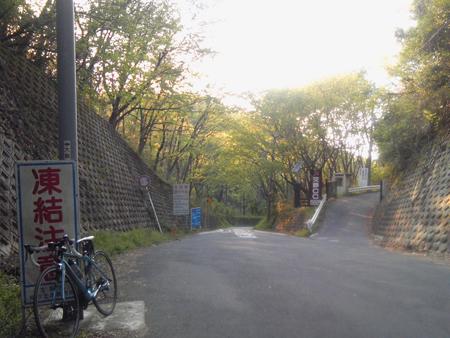 20100501_1.jpg