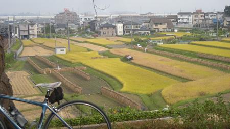 20101014.jpg