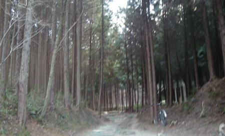 20110110_3.jpg