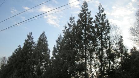 20110202_3.jpg