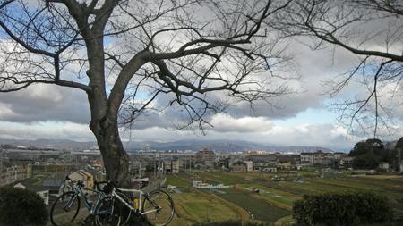 20110302.jpg