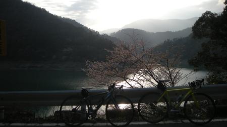 20110411_24.jpg