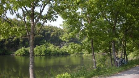 20110520_1.jpg
