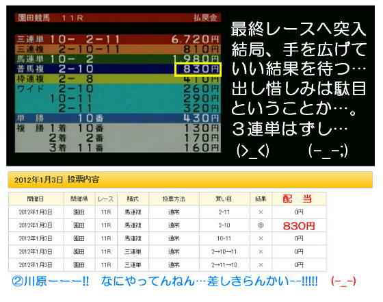 園田最終レース結果