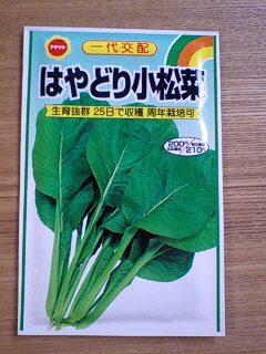 小松菜タネ