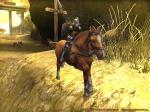 初めての馬