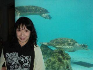 20100514美ら海水族館海亀館