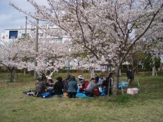 20100406高塚公園花見