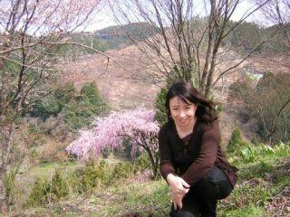 吉野山の桜直美