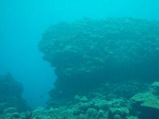 20100513くじら岩