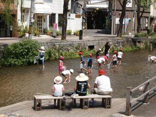 20110818京都風景川で石取り