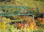 旧鉄橋と黄葉