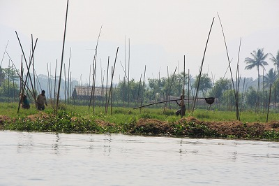 浮畑の景観