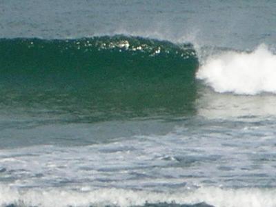 一月良い波