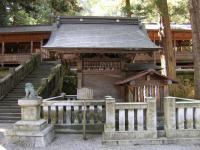 nagano3_kamihon_tenryusuisha.jpg