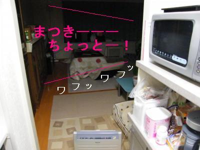 DSCF3749_convert_20090430203300.jpg