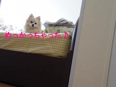 DSCF4239_convert_20090524172431.jpg