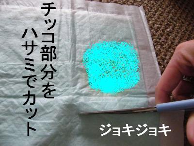 DSCF5030_convert_20090630205359.jpg