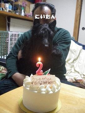 お誕生日名前