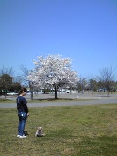 4月9日(木)④