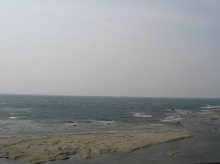 2008503-2.jpg