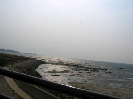 2008503-3.jpg